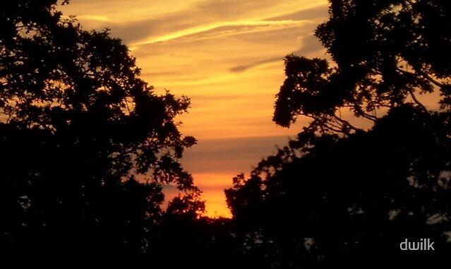 Golden sunset by dwilk