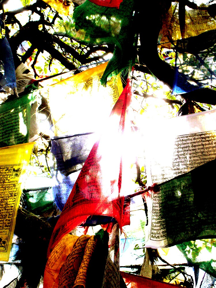 Tibetan Prayer Flags, India by lotusboat