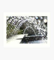 Fountain - Adelaide Museum- SA Art Print