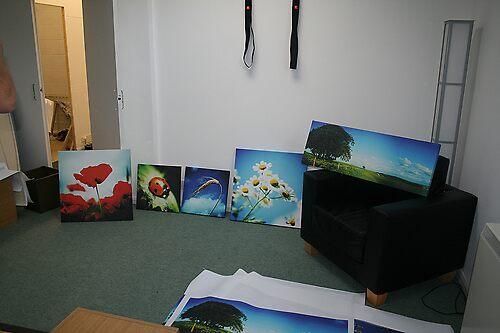 prints by Murray Breingan