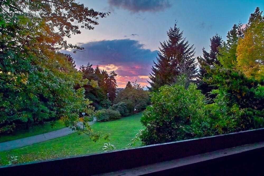 Sundown from Home, October 2008 by Priscilla Turner