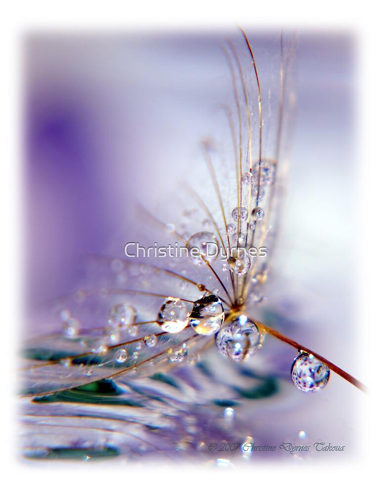 reflection drop3 by Christine Dyrnes