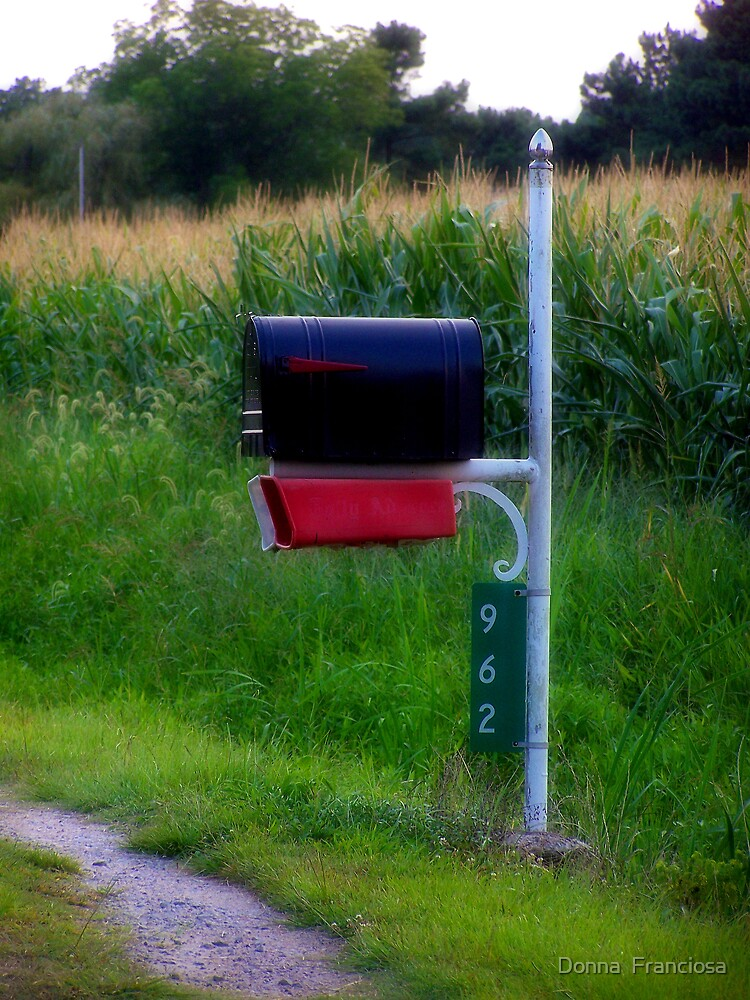 You've Got Mail by Donna  Franciosa