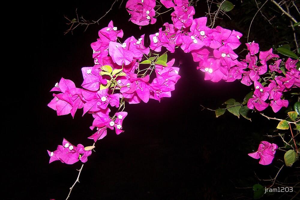 Midnight Flowers by jram1203