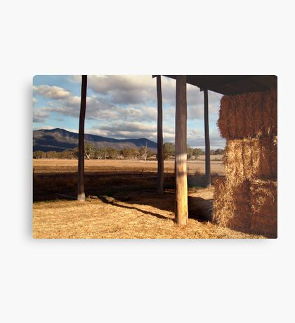Hay Shed,Eversley, Mt Cole State Park Metal Print