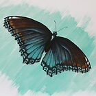 butterfly by diane nicholson