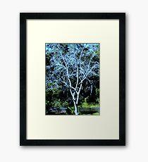 DECIDUOUS TREE Framed Print
