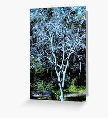 DECIDUOUS TREE Greeting Card