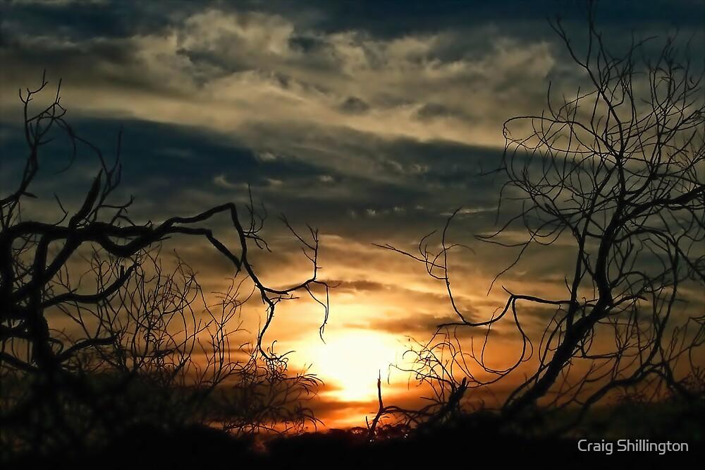 Forever Autumn by Craig Shillington
