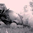 Cat nap on a dog of a day by Craig Shillington