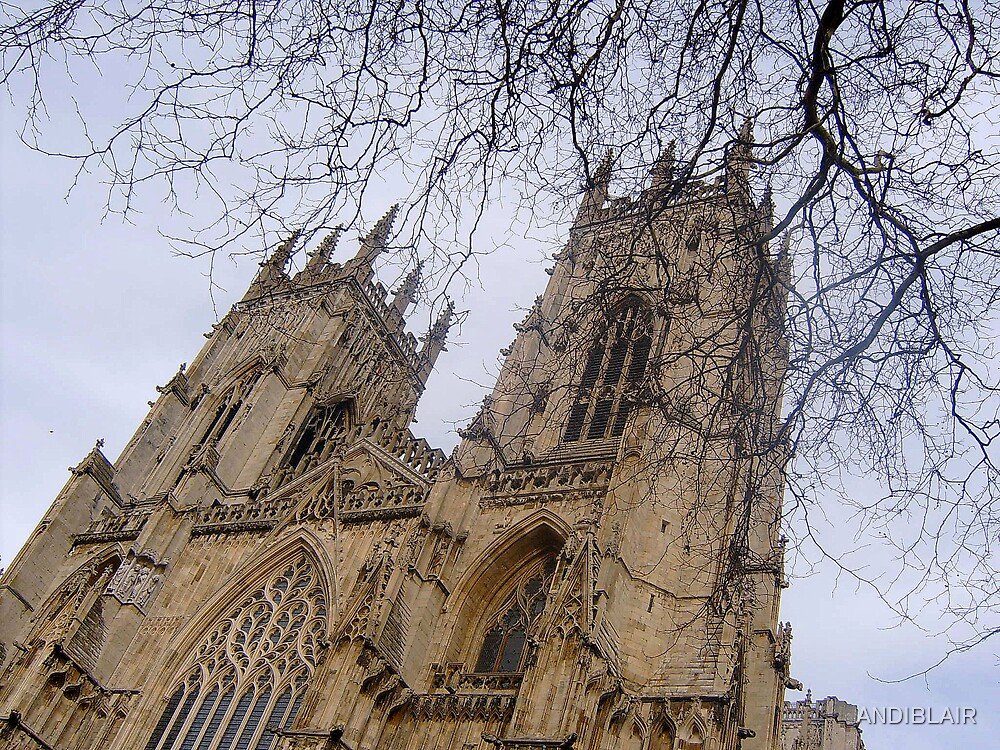 YORK MINSTER by ANDIBLAIR