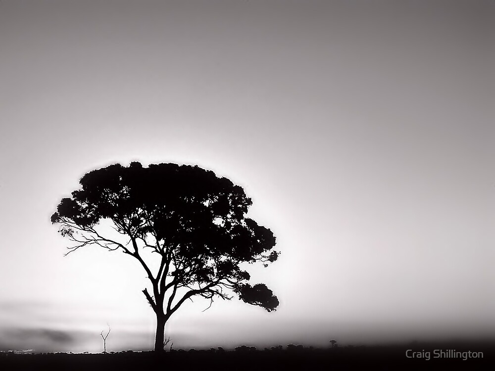 Etheral by Craig Shillington