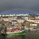 Rainbow Rising by Lee  Gill