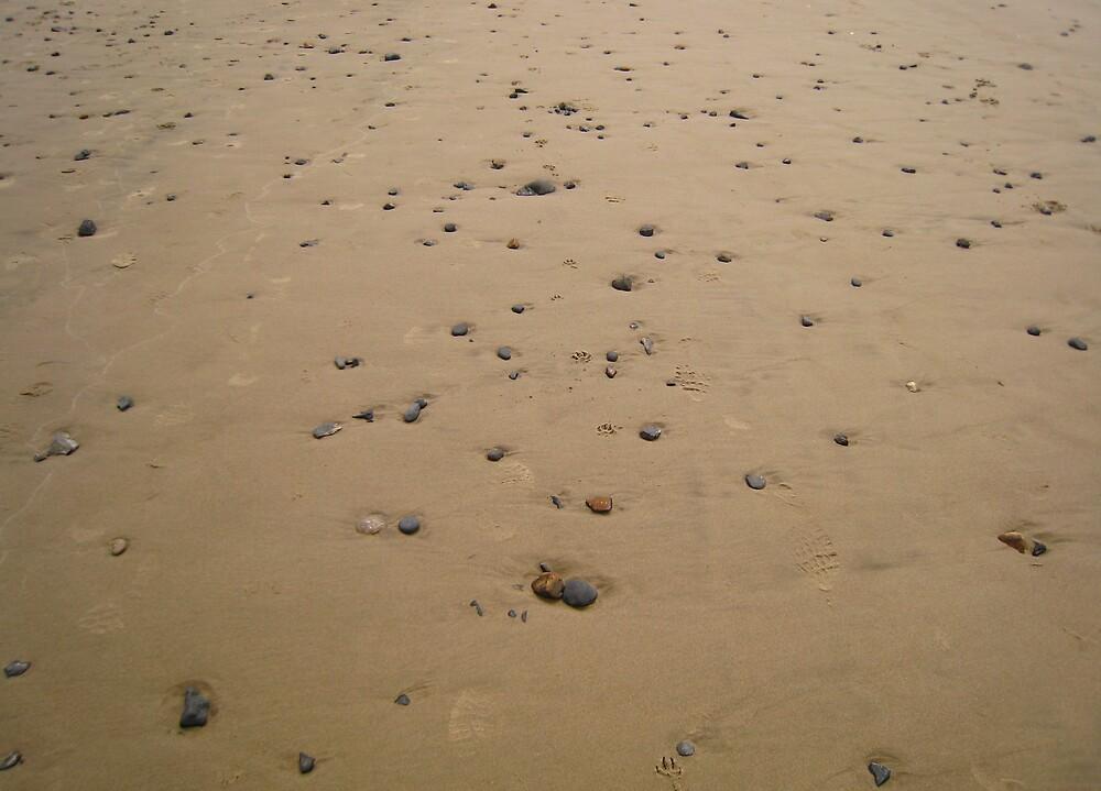 stones by Samantha Lowe