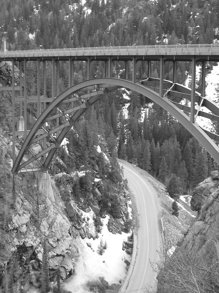 The Bridge by Samantha Lowe