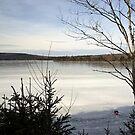 Ice Lake by Martha Medford