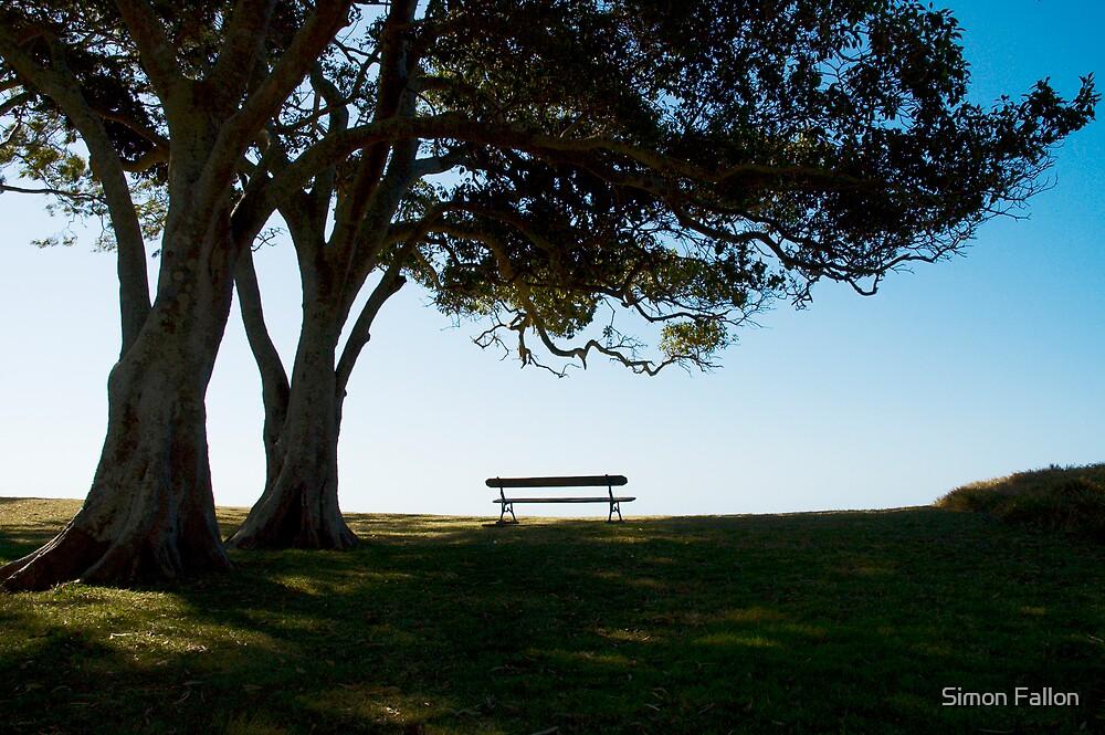 Solitude by Simon Fallon