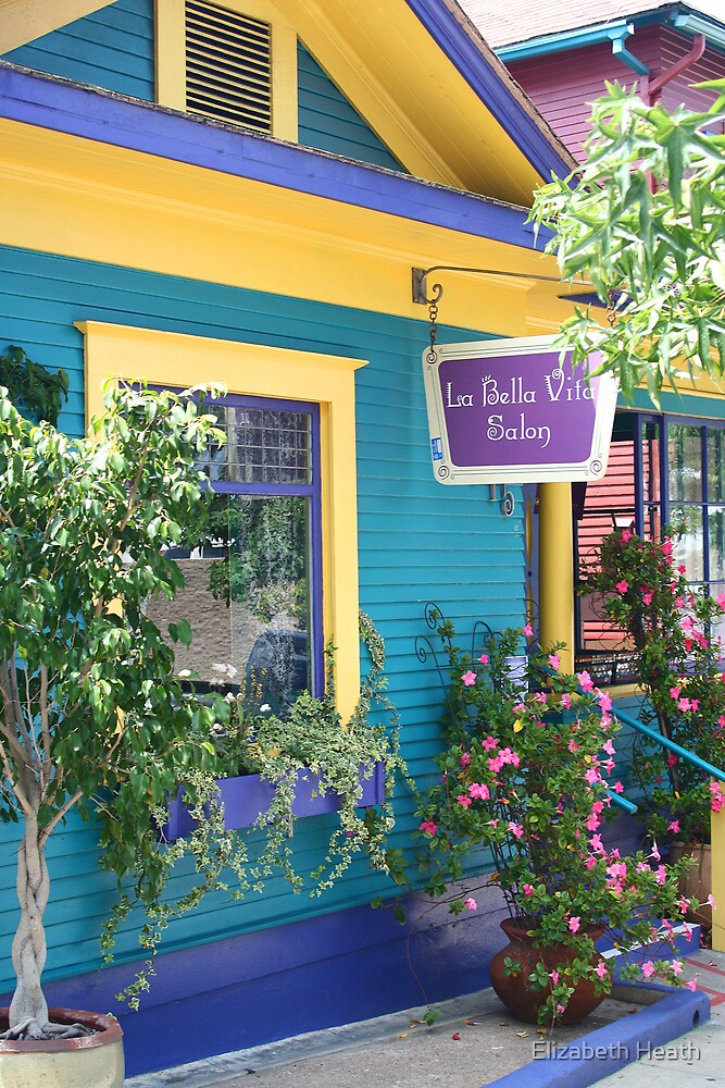 La Bella Vila Salon Little Italy by Elizabeth Heath