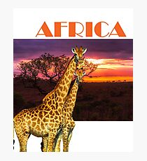 Africa Giraffes and African Sunset Photographic Print