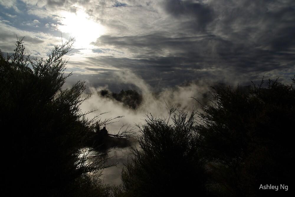 Rotarua lake mists at sunset II by Ashley Ng