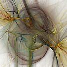 Complicated Spirit by Lois Bennett