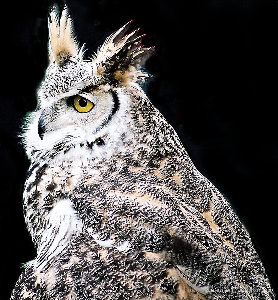 Great Horned Owl in black by Jennifer Page-Kinney