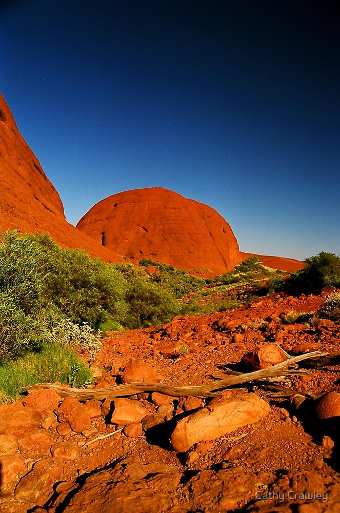 Kata tjuta National Park, NT Australia. landscapephotocomp  by Cathy Crawley