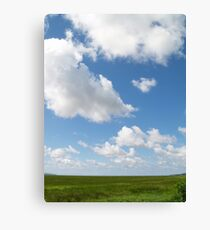 Skys the Limit Canvas Print