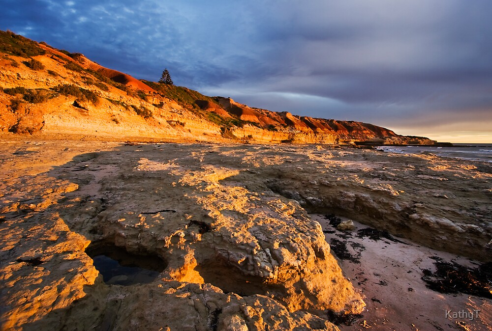 Pt Noarlunga Cliffs by KathyT