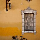 Yellow Wall of Parma by Rae Tucker