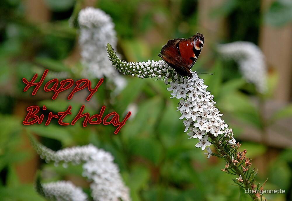 butterfly birthday card by cherryannette