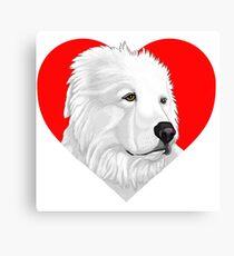 Albus Heart Canvas Print