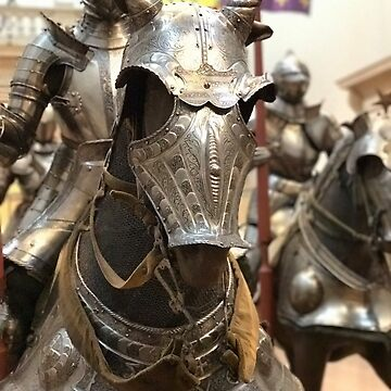 NYC The MET Knight's Armor by LWPerez