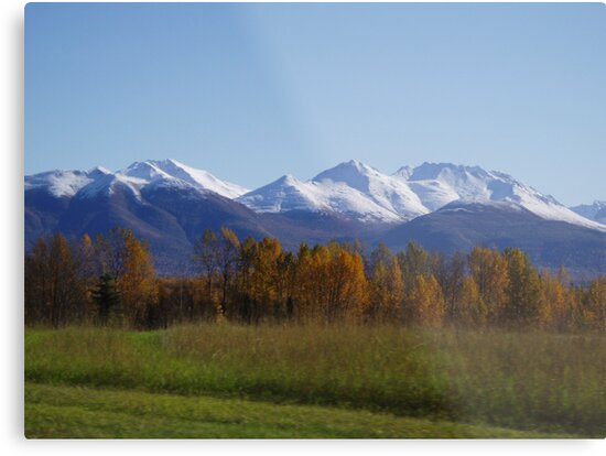 Snow Capped by Robert Phelps
