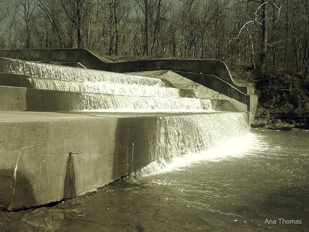 Yellowood Dam by Ana Thomas