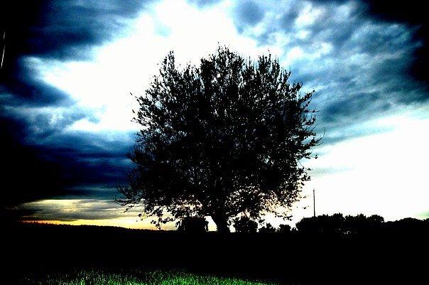 Stormy Weather by dvorak92