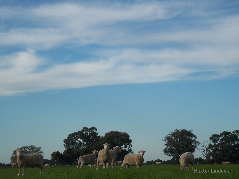 Rural Life by Baxter Lindeman