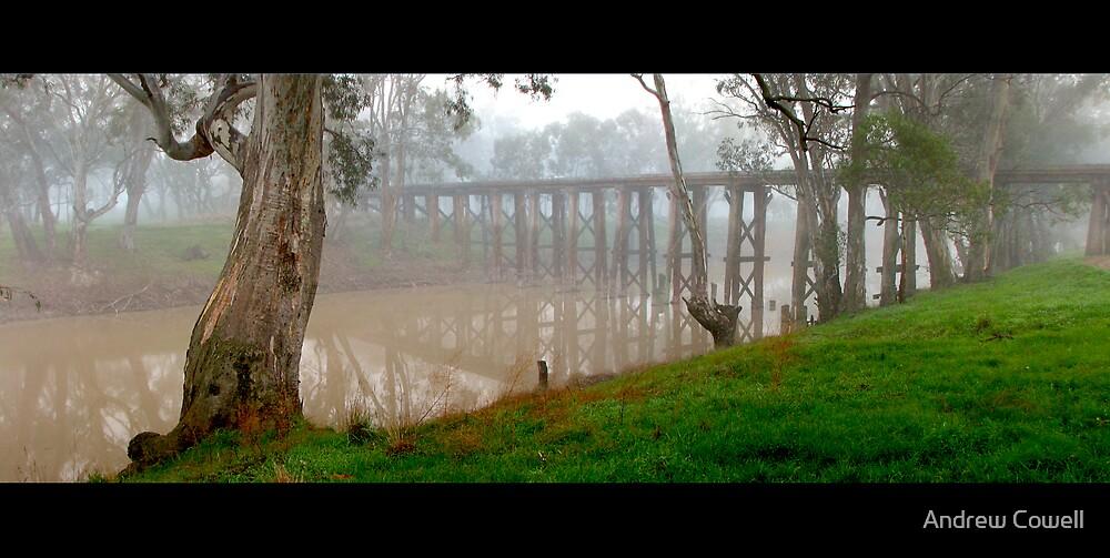 quantong bridge by Andrew Cowell