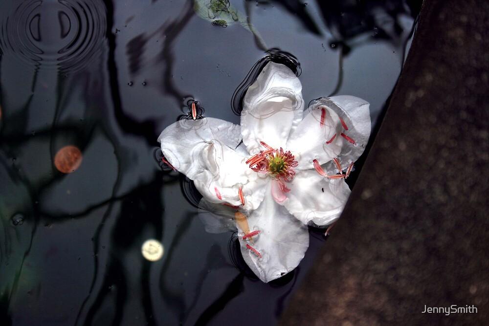 water lily by JennySmith