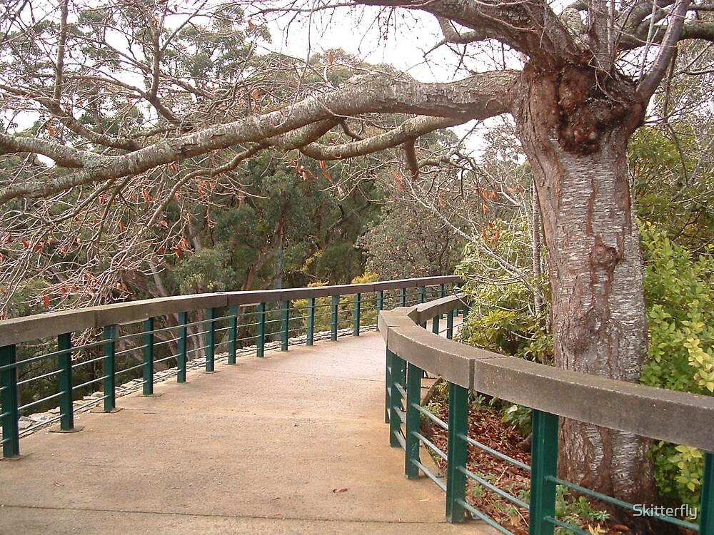 Curving Bridge by Skitterfly