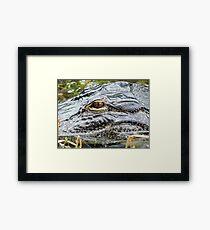 dinasaur eye Framed Print