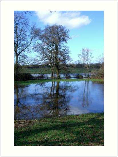 Bartley Water (2) by Gordon Hewstone
