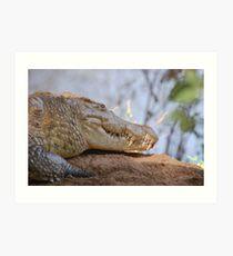 wild crocodile samburu Art Print