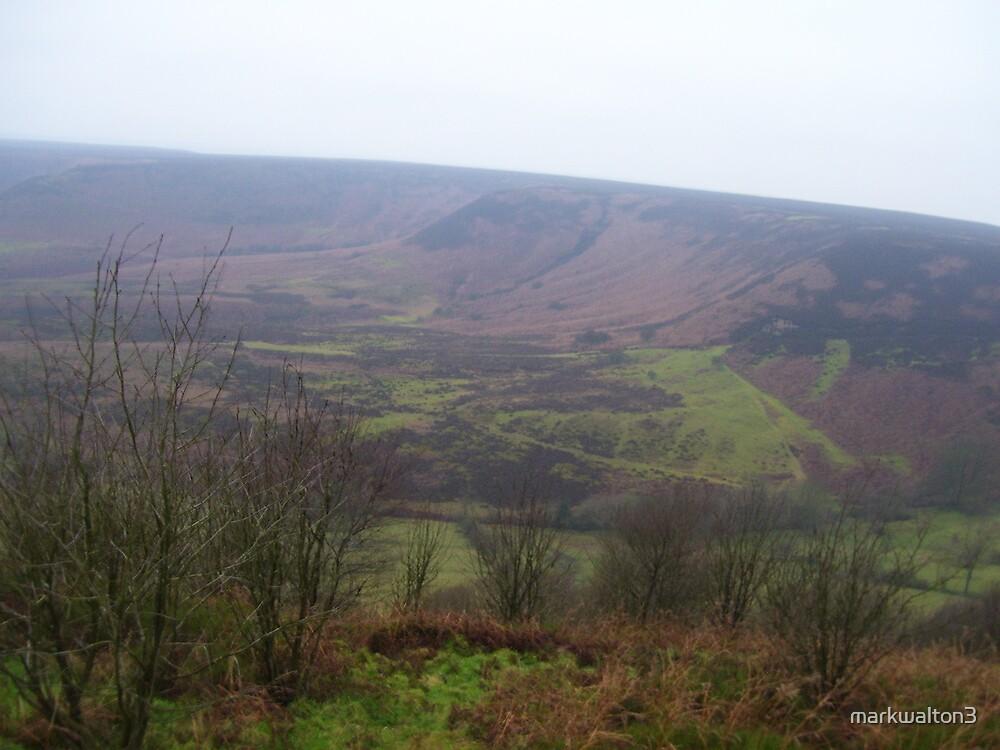 yorkshire Moors by markwalton3