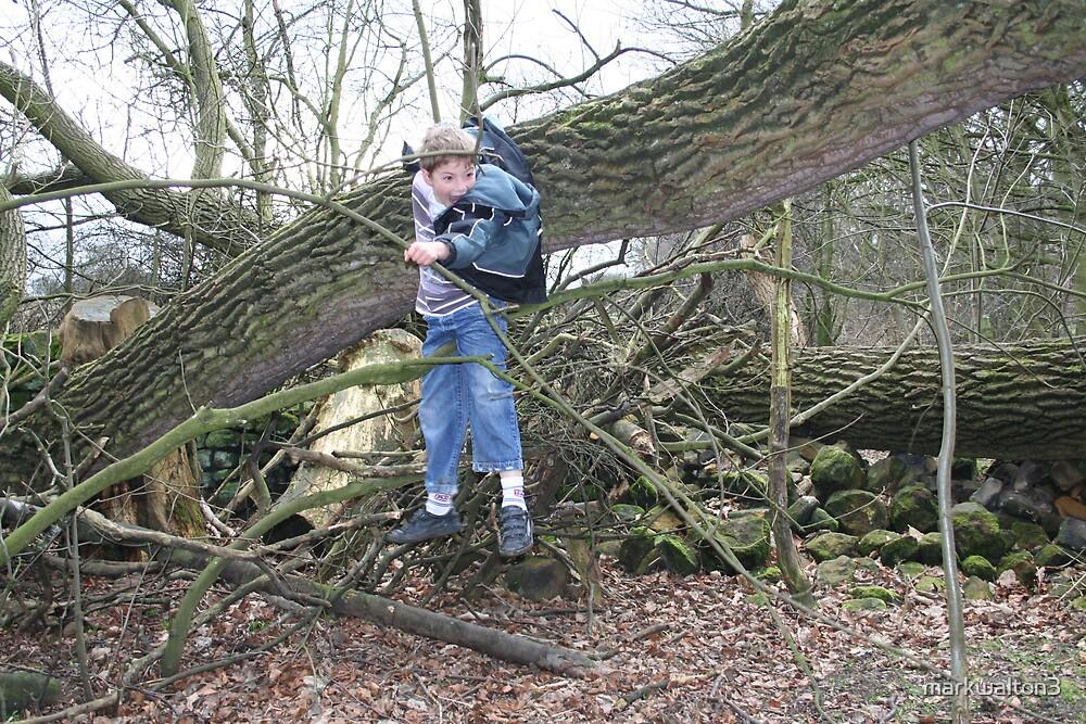 stuck in a tree by markwalton3