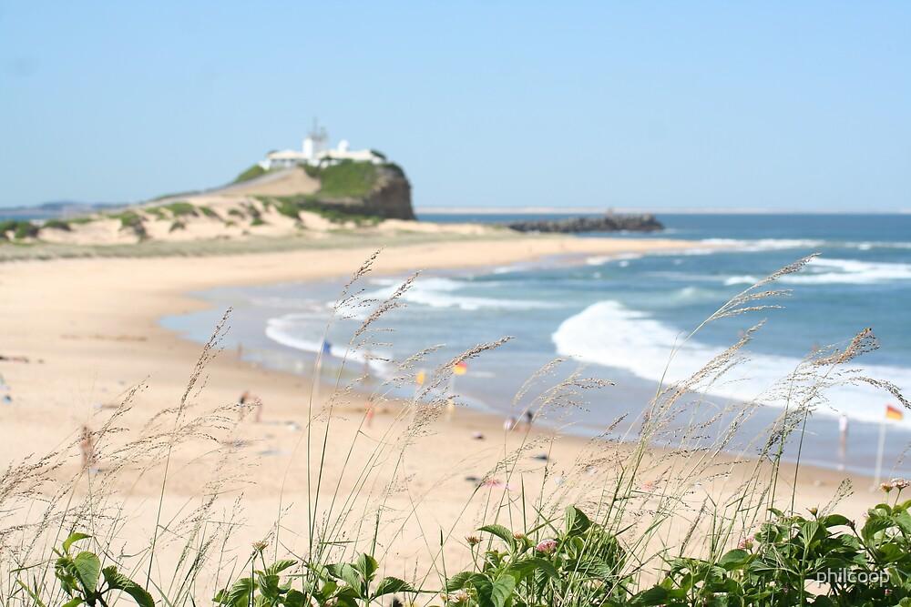 Nobbies Beach by philcoop
