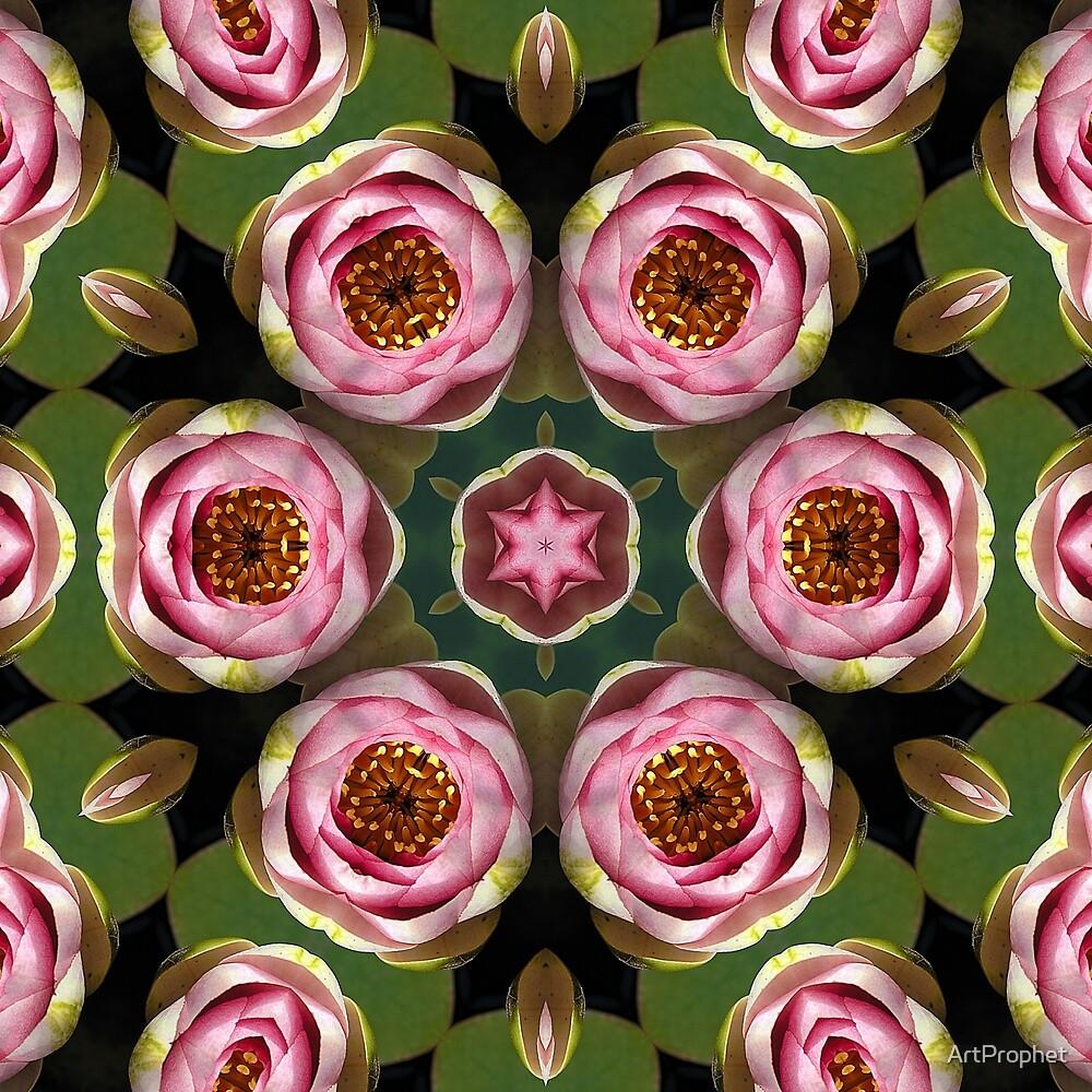 Lotus by ArtProphet
