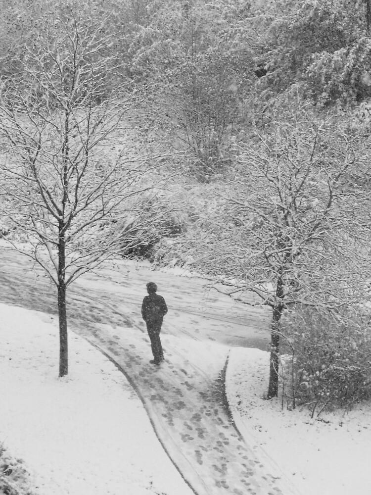 Winter in Saxony by mirkosan