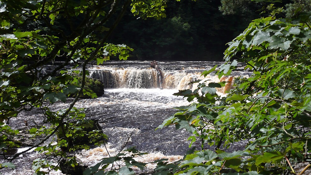 Aysgarth Upper Falls I by Keiron Allen