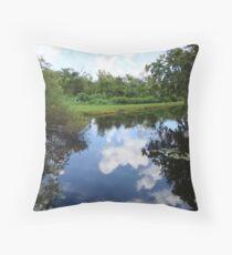 swamp water Throw Pillow